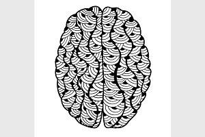 Human Brain doodle