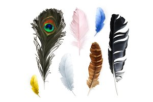 Feathers icons
