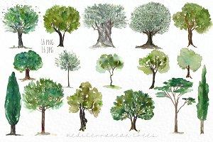 Trees mediterranean clip art