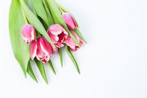 beautiful tulip bouquet