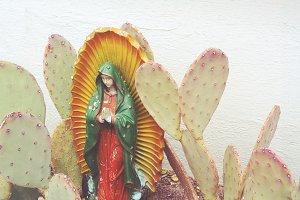 Holy Mother & Cactus