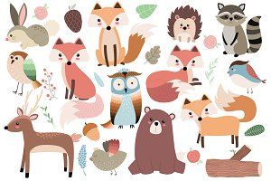 Woodland Forest Animals Clipart Set