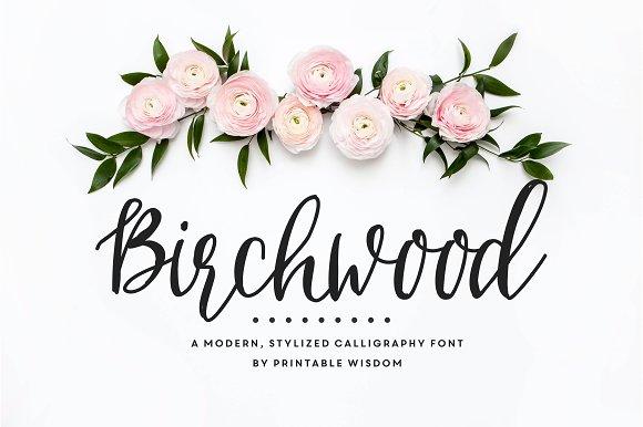 Birchwood calligraphy font fonts creative market