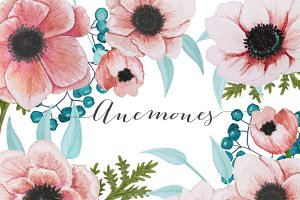 Watercolor Anemones in Peach