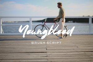 Youngblood brush script font