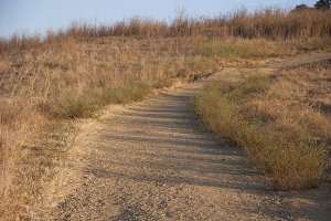Dry Grass Trail (Photo)