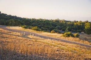 Bay Area Trail (Photo)