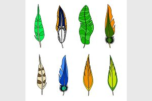 Set of feathers.