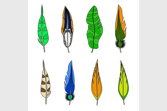 Set of feathers. in Illustrations