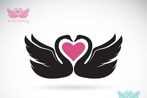 Vector image of two loving swans