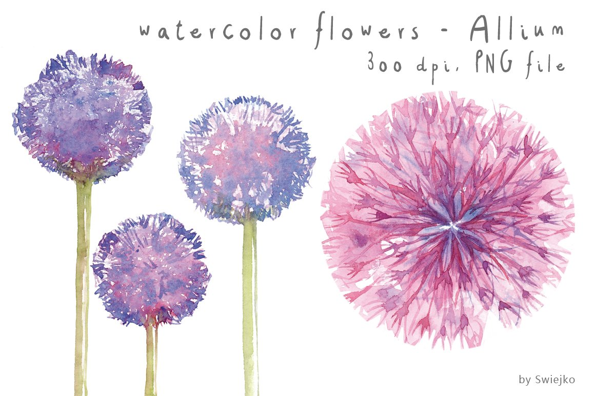 Watercolor Flowers, Floral ~ Illustrations ~ Creative Market