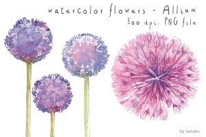 Watercolor Flowers, Floral Clip art