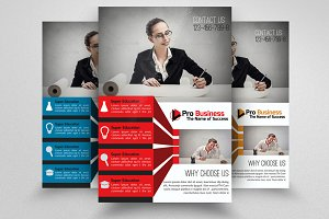 Business Dealing & Consulting Flyer