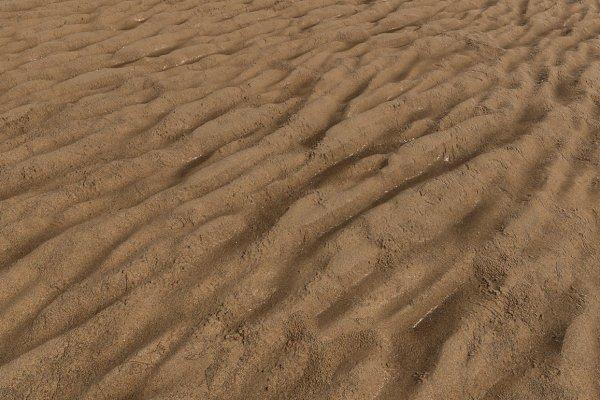 3D Organic: Fiat Lux - Wet Sand A (Tileable)