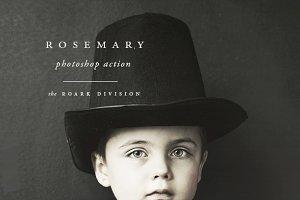 """Rosemary"" Light Photoshop Action"