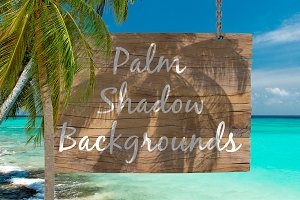 Palm Shadow Backgrounds