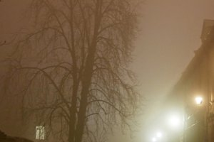 Night street in the fog