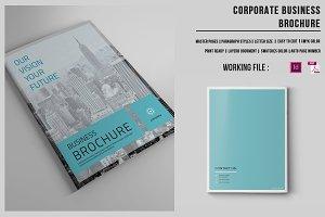 Business Brochure | 16 Pages |-v421