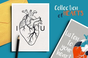 Anatomical hearts & quotes