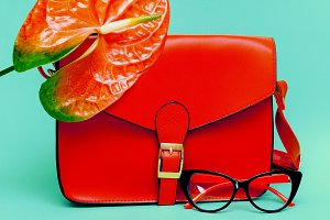 Focus on Red. Trend Accessories