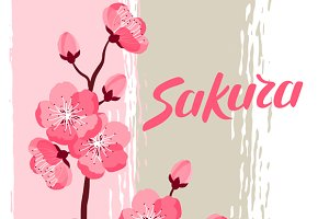 Japanese sakura background.