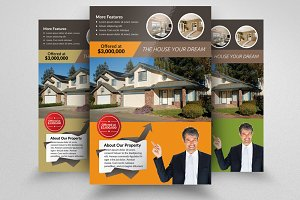 Real Estate Agency PSD Flye