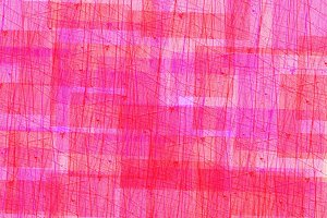 Texture abstract red straight lines