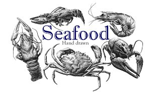 Seafood. Hand drawn.