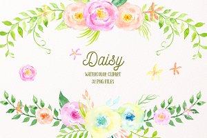 Watercolor Clipart Daisy