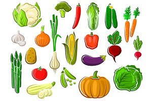 Assorted farm vegetables