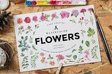 Watercolor Flowers Pack Vol 1
