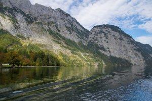 Alpine Forest 2