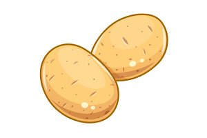 Couple potatoes vector illustration eps10 isolated white