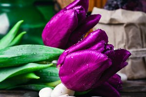 Bouquet of purple tulips