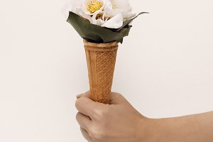 Hand and Ice Cream Flowers