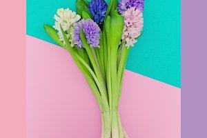 Flowers Minimalism