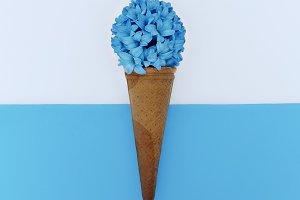Flowers Ice Cream Minimal