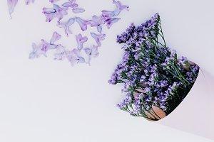 Purple Flowers Aroma Minimal
