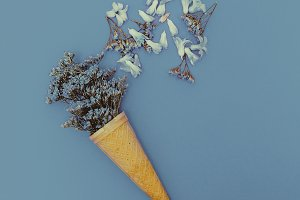 Blue flowers in the cone Minimal