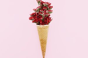 Red Flowers in waffle Cone Minimal