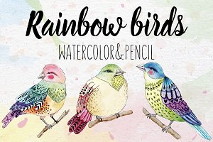 Rainbow watercolor birds set