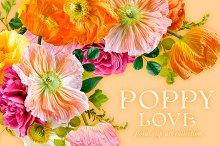 Poppy Love Floral Clip Art