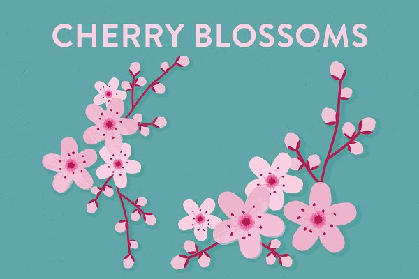 Vector Cherry Blossom Flowers
