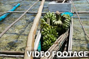 Bananas in the boat