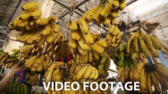 bananas in the fruit market