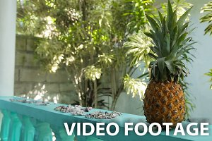 fresh pineapple outdoors