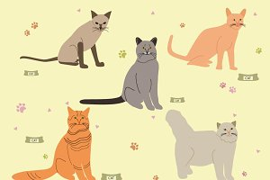 Vector Cats Set