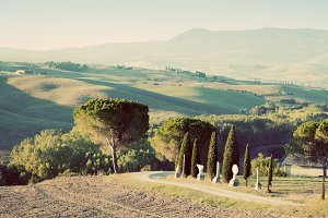Tuscany landscape in the morning.