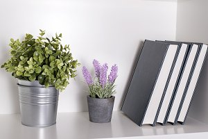 Plants and books on the shelf
