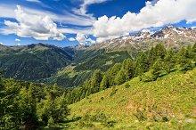 Trentino - Pejo valley